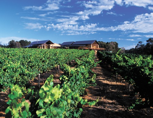 Watershed Premium Wines - Accommodation Sydney