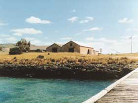 Mt Dutton Bay Woolshed Hostel - Accommodation Sydney