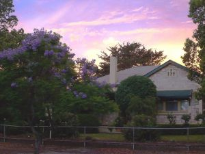 Angaston Rose BB - Accommodation Sydney