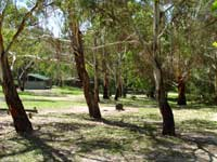 Woods Reserve - Accommodation Sydney