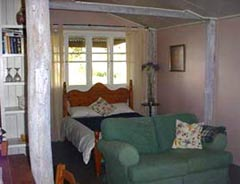 Bunnyconnellen Olive Grove and Vineyard - Accommodation Sydney