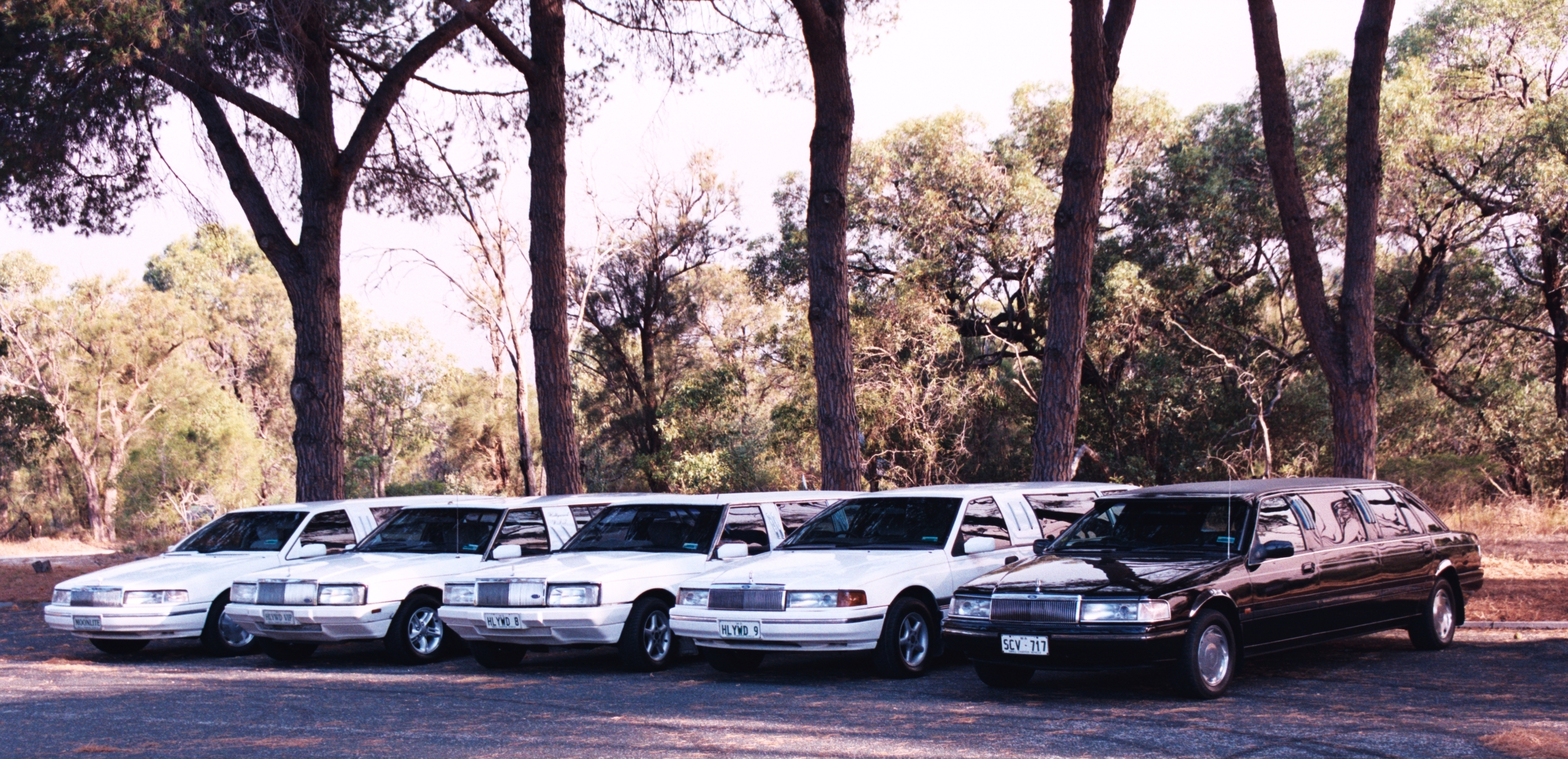 Hollywood VIP Limousines - Accommodation Sydney