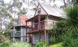 Great Ocean Road Cottages - Accommodation Sydney