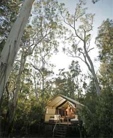 Paperbark Camp - Accommodation Sydney