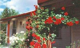 Rose Cottage Bed And Breakfast - Accommodation Sydney