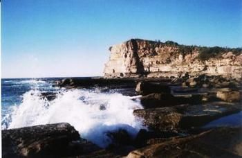 Terrigal Lagoon Bed and Breakfast - Accommodation Sydney