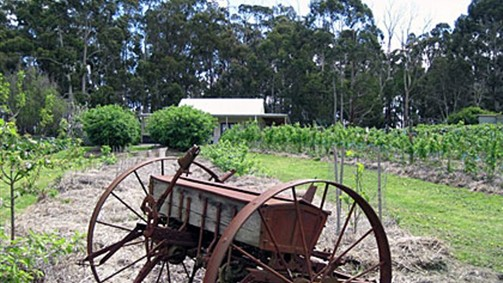 Pennyroyal Raspberry Farm & Cidery - Accommodation Sydney