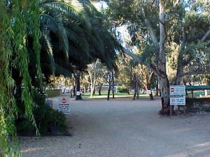 Kingston-On-Murray Caravan Park - Accommodation Sydney