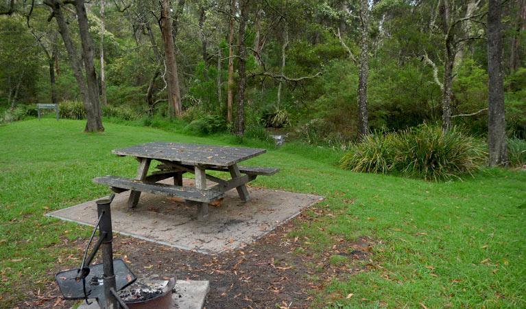 Chaelundi campground - Accommodation Sydney