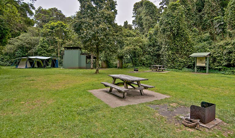 Forest Tops campground - Accommodation Sydney