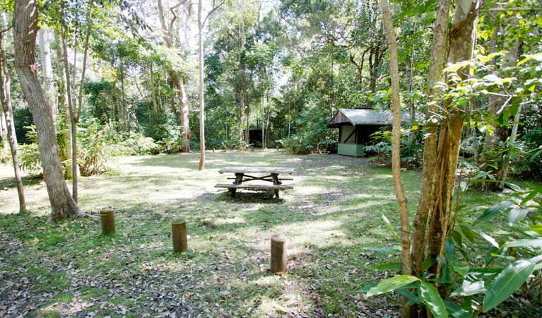 Iron Pot Creek campground - Accommodation Sydney