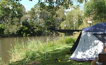 Williams River Holiday Park - Accommodation Sydney