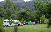 Sandy Hollow Tourist Park - Sandy Hollow - Accommodation Sydney