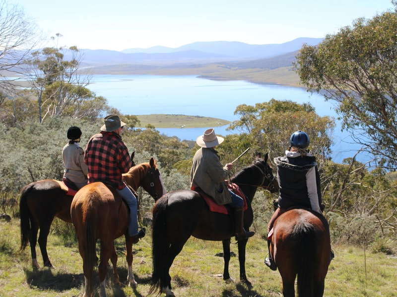 Reynella Homestead and Horseback Rides - Accommodation Sydney