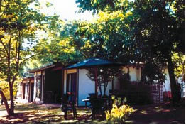 Forest Lodge - Accommodation Sydney