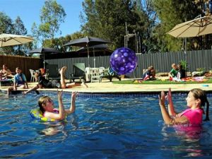 Kingston On Murray Caravan Park - Accommodation Sydney