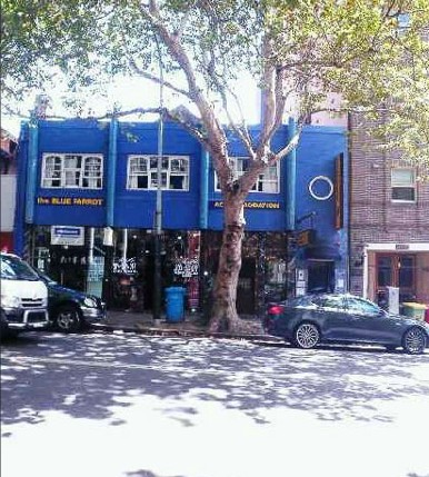 Blue Parrot Backpackers - Accommodation Sydney