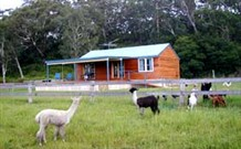 Moorallie Cottage Farm Stay - Accommodation Sydney