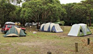 Pretty Beach Campground Murramarang National Park - Accommodation Sydney
