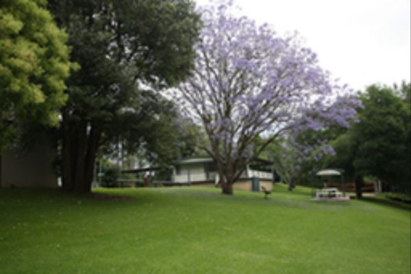 Hawkesbury Riverside Tourist Park - Accommodation Sydney