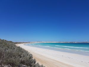 Coffin Bay National Park Campgrounds - Accommodation Sydney