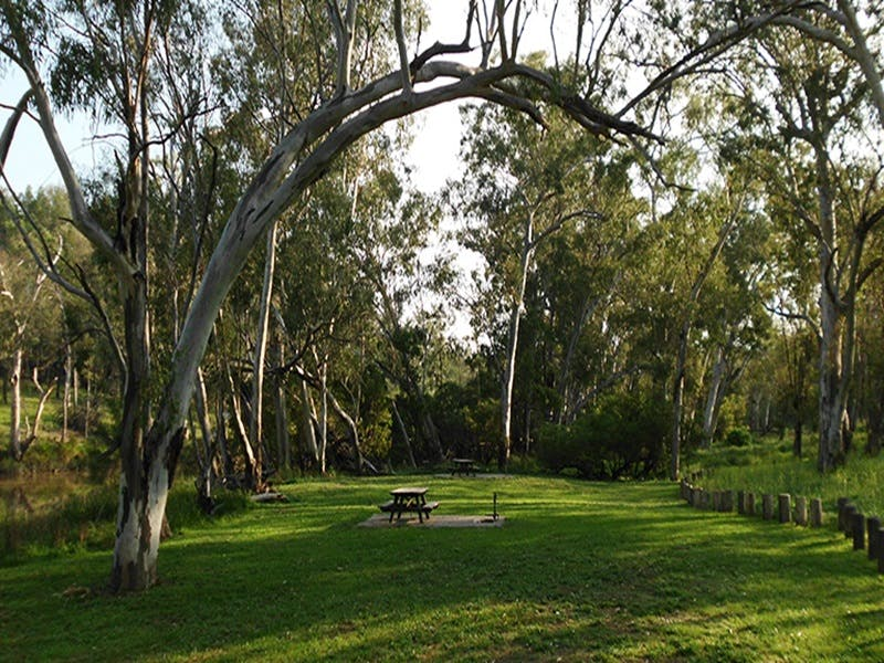 Kookibitta campground - Accommodation Sydney