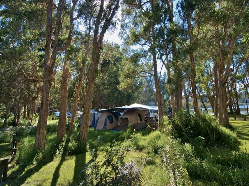 Neranie campground and picnic area - Accommodation Sydney