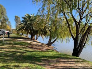 Robinvale Riverside Caravan Park - Accommodation Sydney