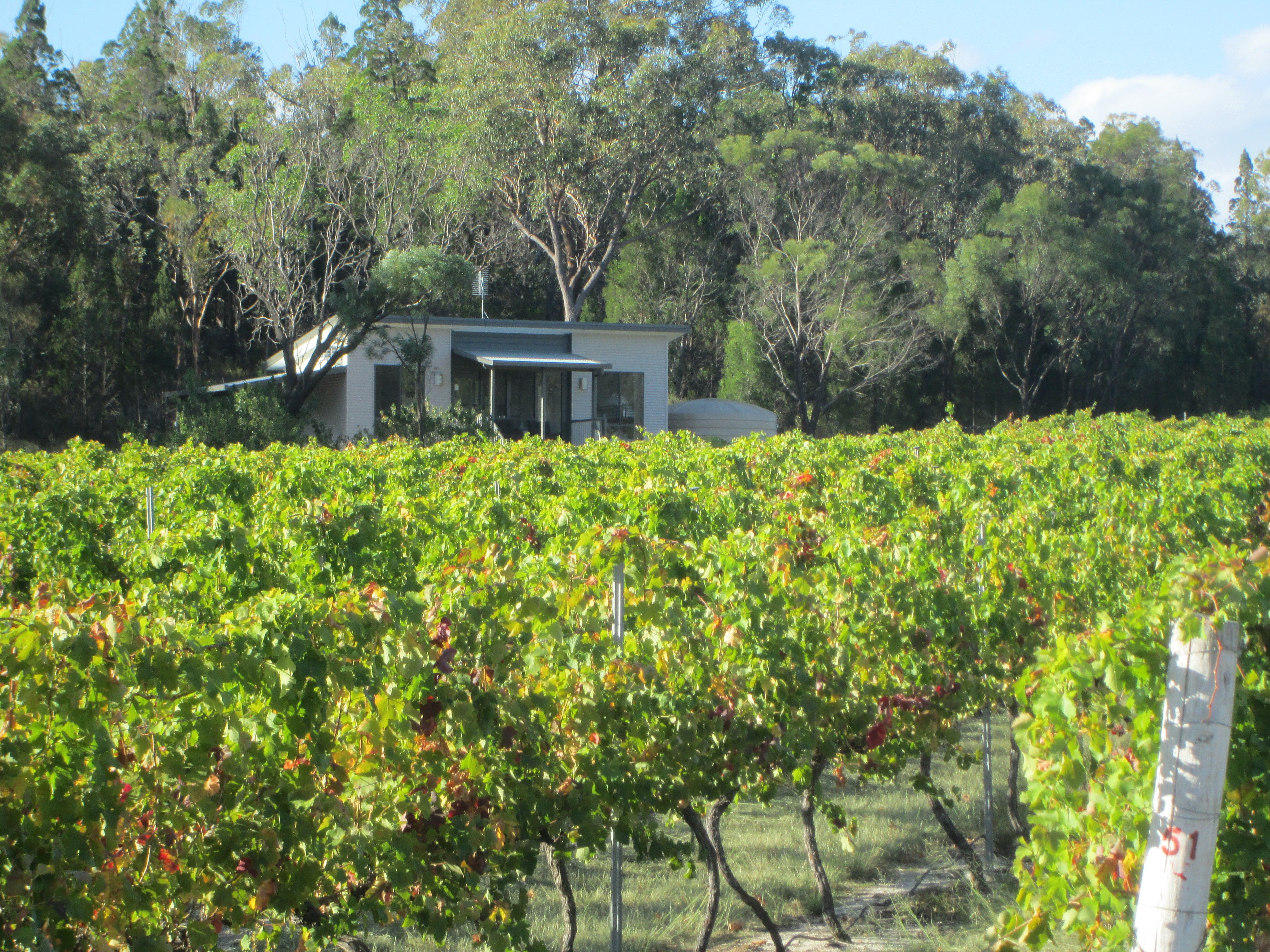 Just Red Wines Vineyard Cabins - Accommodation Sydney
