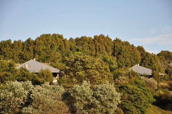 Tallaringa Views - Accommodation Sydney