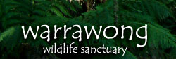 Warrawong Wildlife Park - Accommodation Sydney