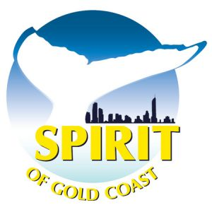 Spirit of Gold Coast Whale Watching - Accommodation Sydney