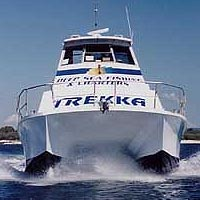 Sunshine Coast Fishing Charters - Accommodation Sydney