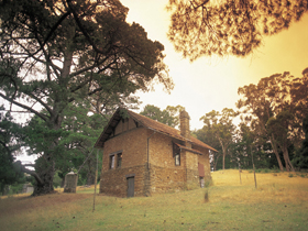 Heysen - The Cedars - Accommodation Sydney