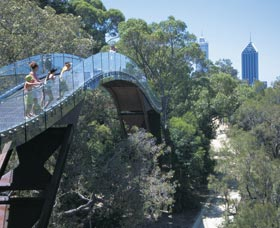 Lotterywest Federation Walkway - Accommodation Sydney