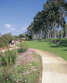 Kings Park Free Guided Walks - Accommodation Sydney