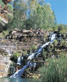 Fortescue Falls - Accommodation Sydney