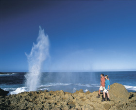 The Blowholes Carnarvon - Accommodation Sydney