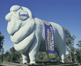 Giant Ram Tourist Park - Accommodation Sydney