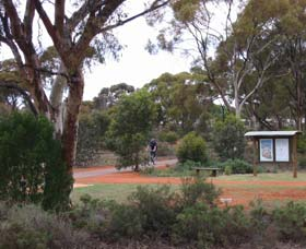 Gribble Creek Walk and Cycle Way - Accommodation Sydney