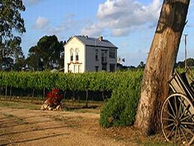 Highbank Vineyards - Accommodation Sydney