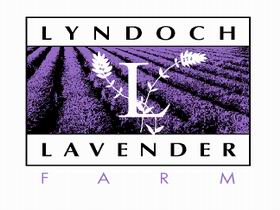 Lyndoch Lavender Farm and Cafe - Accommodation Sydney