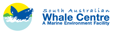 South Australian Whale Centre - Accommodation Sydney
