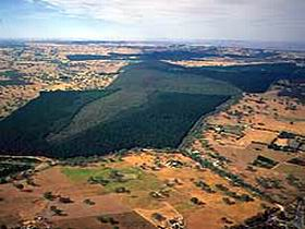 Mount Crawford Forest Reserve - Accommodation Sydney