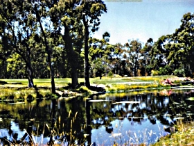Smithton Country Club - Accommodation Sydney
