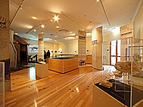 Tasmanian Tiger Exhibition - Accommodation Sydney