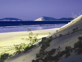 Cooloola Great Sandy National Park - Accommodation Sydney