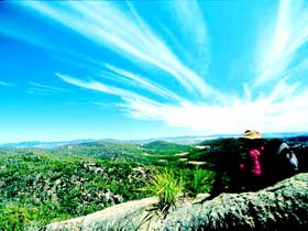 Girraween National Park - Accommodation Sydney