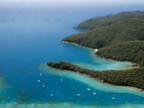 Butterfly Bay - Hook Island - Accommodation Sydney