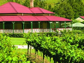 OReillys Canungra Valley Vineyards - Accommodation Sydney